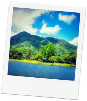 Polaroid Lake Placid